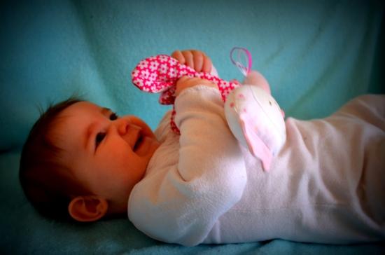 Une graaaand merci à Noëllie pour ce magnifique papillon tout de suite adopté par Misha <3