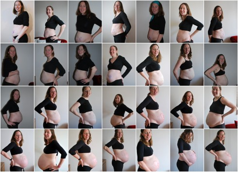 ventre grossesse femme enceinte 1-2-3-4-5-6-7-8-9 mois de grossesse